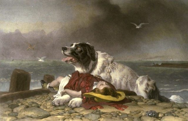 Landseer_Saved