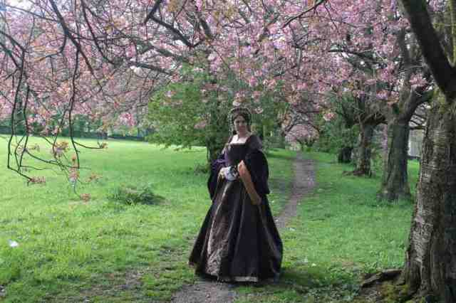 Mary gown cherry trees